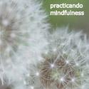 Compra el CD de reducción de estrés, de Sylvia Comas
